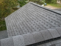 Asphalt Shingle Roofing Almond